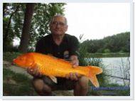 2015.06.30 De�k G�za 3,9 kg 60 cm Koipontya